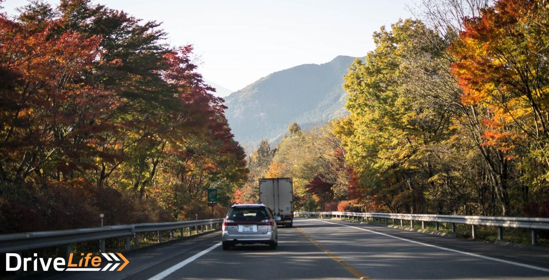 pagani-touge-drive-japan-nikko-trees